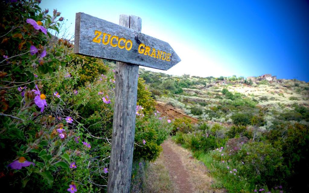 Zucco Grande